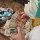 Единовременное пособие по беременности и родам: что это, кто может получить и каковы нюансы получения