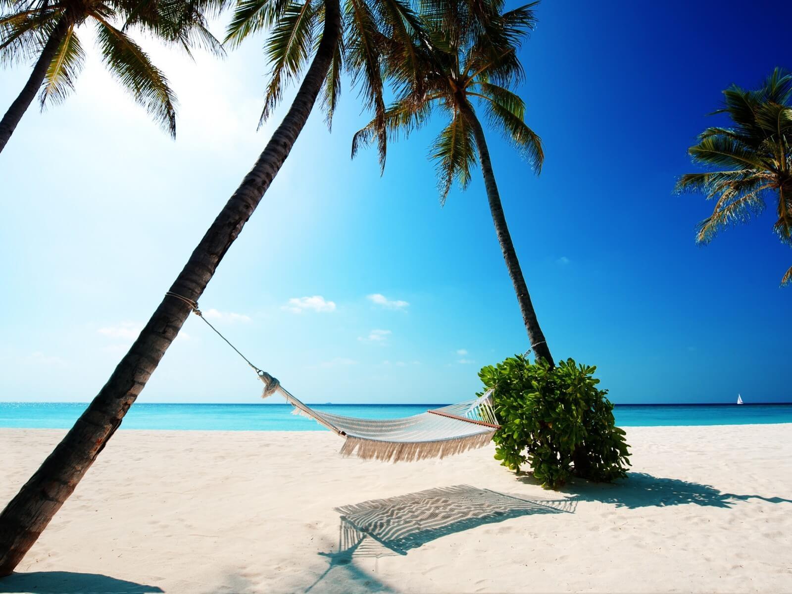 Ключевые положения об отпуске в Трудовом кодексе