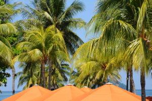 Заявление на отпуск и отпускные