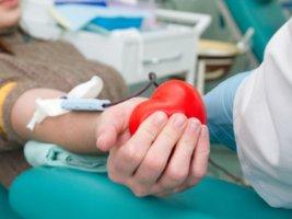 Законодательное регулирование донорства