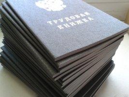Трудовая книжка при первичном трудоустройстве