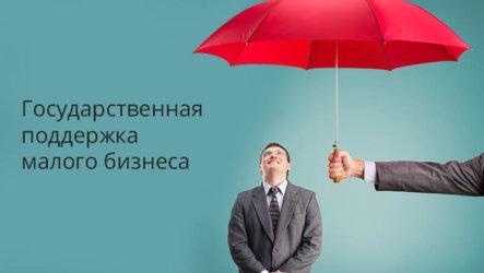 Государственная поддержка для бизнесменов в России: субсидии предпринимателям
